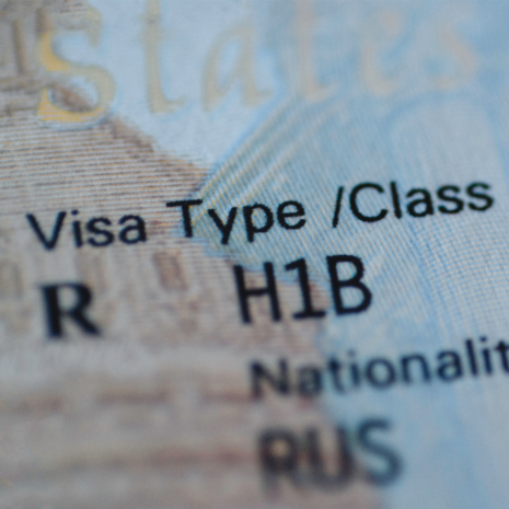 Background for the 'H-1B Specialty Occupation Status' link block