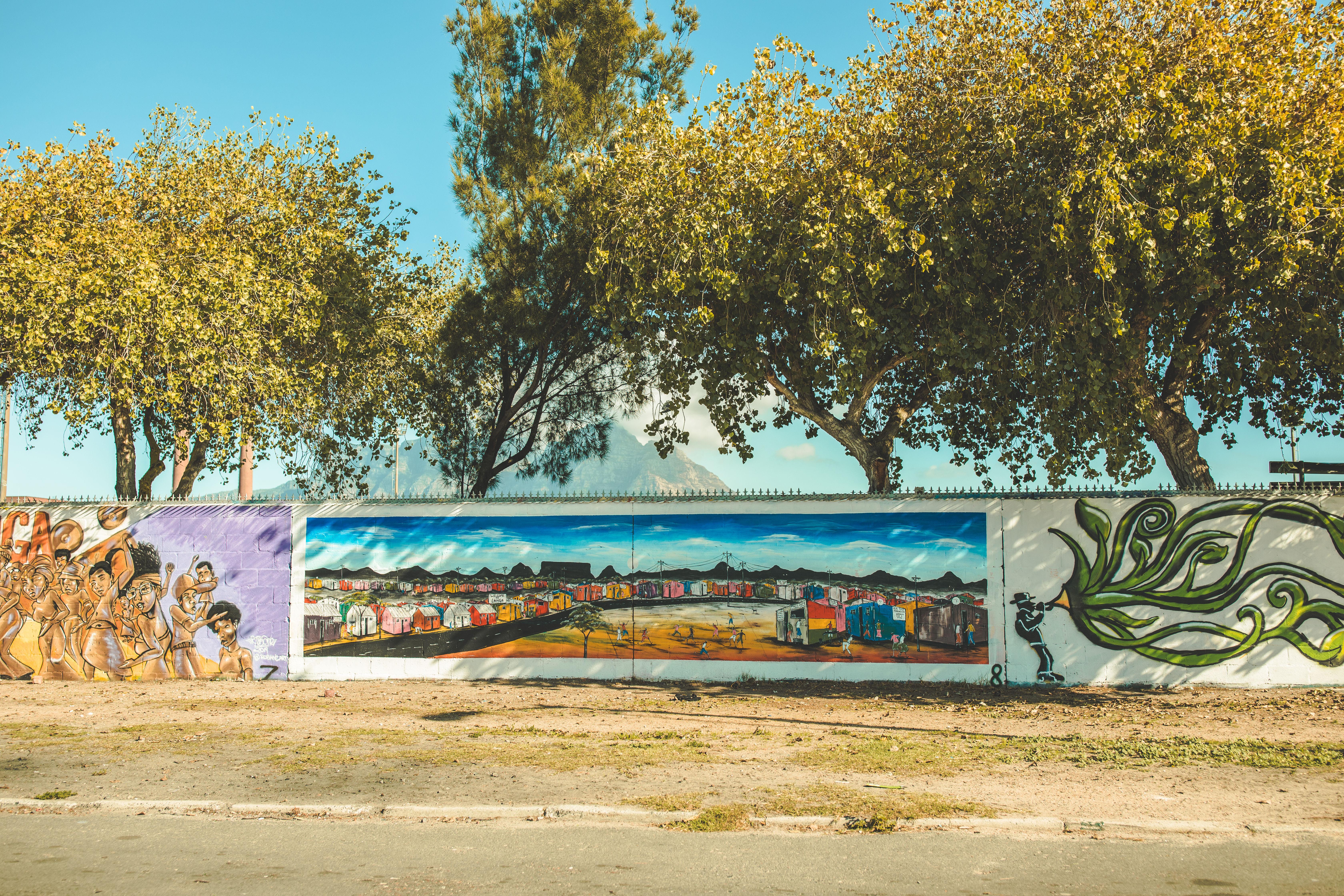 Cape Town Mural