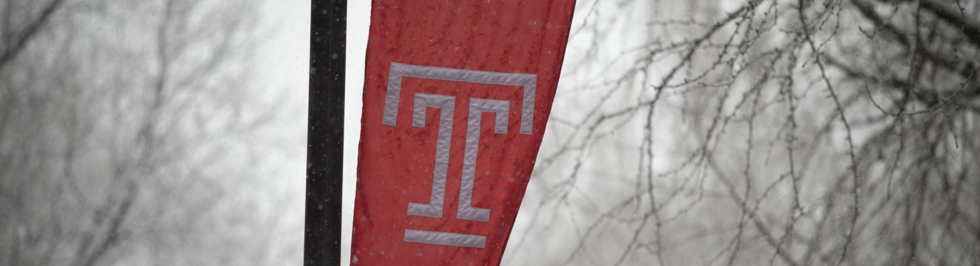 Temple Flag in Winter